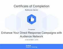 Enhance your direct response campaigns with audience network